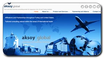 AksoyGlobalWebsite_project